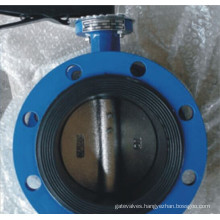 Lever Operated Flanged Double Eccentric Butterfly Valve