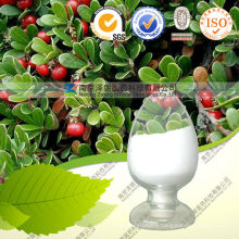 Factory Supply CAS: 497-76-7 Large Quantity Beta-Arbutin 98% with Best Price