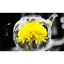 dried chrysanthemum flowers tea