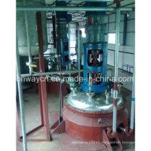 Fj High Efficent Factory Pharmaceutical Hydrothermal Synthesis Reactor de cuarzo de hidrogenación agitada