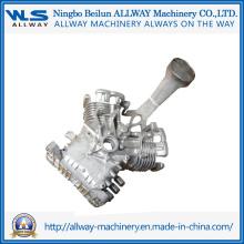 Fundición a presión moldeada a alta presión Mold / Sw025 Gasolina Motor Box \ Castings
