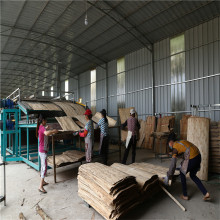 Holzausrüstung für Furnierwalzentrockner