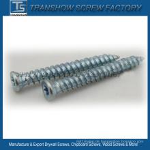 Blau-weiße Zink-galvanisierte konkrete Schrauben
