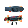 Electric Skateboard with Remote Control System Electric Skate Board