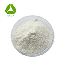 Fat burning white kidney bean extract powder1% Phaseolin