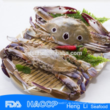 Gefrorene ganze Krabbe
