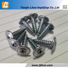 Modifizieren Sie Truss Head Self Tapping Screw Factory