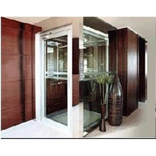 Small Home Elevator with Low Cost in China