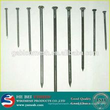 Acero inoxidable barato / hormigón galvanizado / clavos comunes del anping, surtidor de China