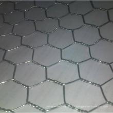 Rede de fio hexagonal galvanizada / rede de fio de galinha