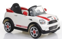 Double Seats Electric Battery Cars Outdoor