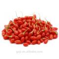 Venta al por mayor Secado salvaje de Goji Berry Ningxia