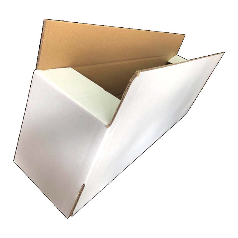 Beautiful White Carton