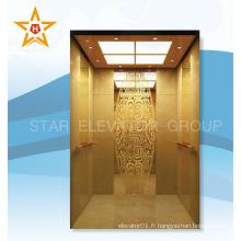 Ascenseur de passagers de luxe à chargement lourd