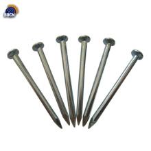 galvanized common wire nails