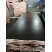 21mm Construction Plywood Brown Film Poplar Core WBP Glue