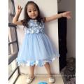 Blumen lgiht blaue volle Blumen Spitzenkleider weichen Tüll hochwertige Kinder klassische Geburtstag Living Theater Kleidung Kleider Mädchen