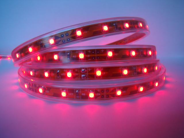 3528 Flexible LED Strip Light Blanc pur