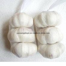Китайский нормальный белый чеснок, чистый белый чеснок Цена