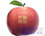 laser marking for fruit