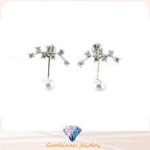 Good Quality & Fashion Jewelry 3A CZ 925 Silver Earring (E6540)