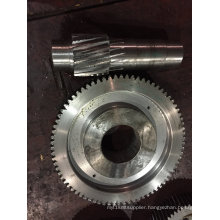 High Quality Gear Wheel and Gear Shaft for Reduction Gears