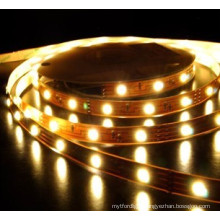 Best LED Lighting Factory in Ruian 12V/24V LED Strip Light SMD3528 5050
