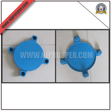 Hot Sale Blue PE Caps for Blind Flanges (YZF-C269)