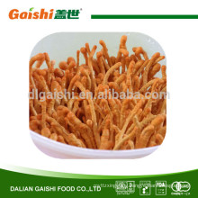 Herbal Medicine High Quality Chinese caterpillar fungus