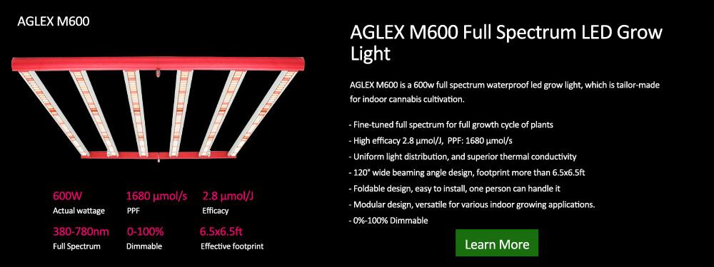 Aglex M600