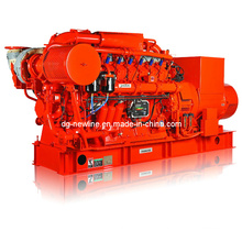 Natural Gas Generator Set (NPR1100GFRQ)