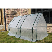 High definition for Plastic Film Greenhouse Small Size Single Film garden Greenhouse export to Romania Exporter