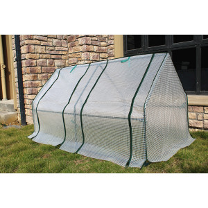 Small Size Single Film garden Greenhouse