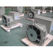 Générateur sans brosse triphasé de haute qualité de 31.3kVA / 25kw (JDG184G)