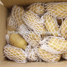2014 hot sale chinese fresh potatos in price