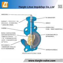 Válvula Borboleta de Ferro Fundido ou Dúctil Multi Padrão