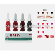 2016 Top sales permanent makeup ink tattoo pigment