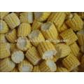 2015 frozen iqf sweet corn cob