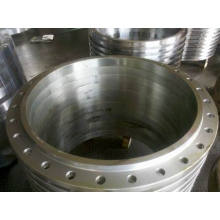 Large Ring Forging Flanges