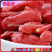 Zero pesticide goji berries supplements how many goji berries should i eat daily where to buy goji berries seeds without heavy