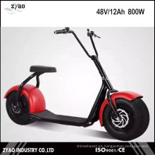 1000W Brushless Electric Scrooser Ciudad Scooter