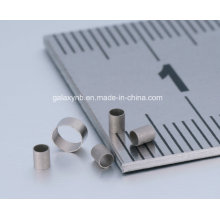 Micro Seamless Stainless Steel Precision Pipes T0.1L16.3