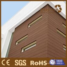 Revestimiento de la pared de Material de construcción de Foshan, al aire libre de WPC compuesto de madera plástico