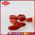 Grossiste de fruits de mer goji