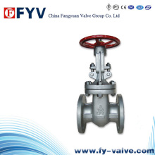 API Manual Cast Stainless Steel Gate Valve