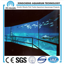 Super Clear Acrylic Panel Viewing of Acrylic Panel Aquarium