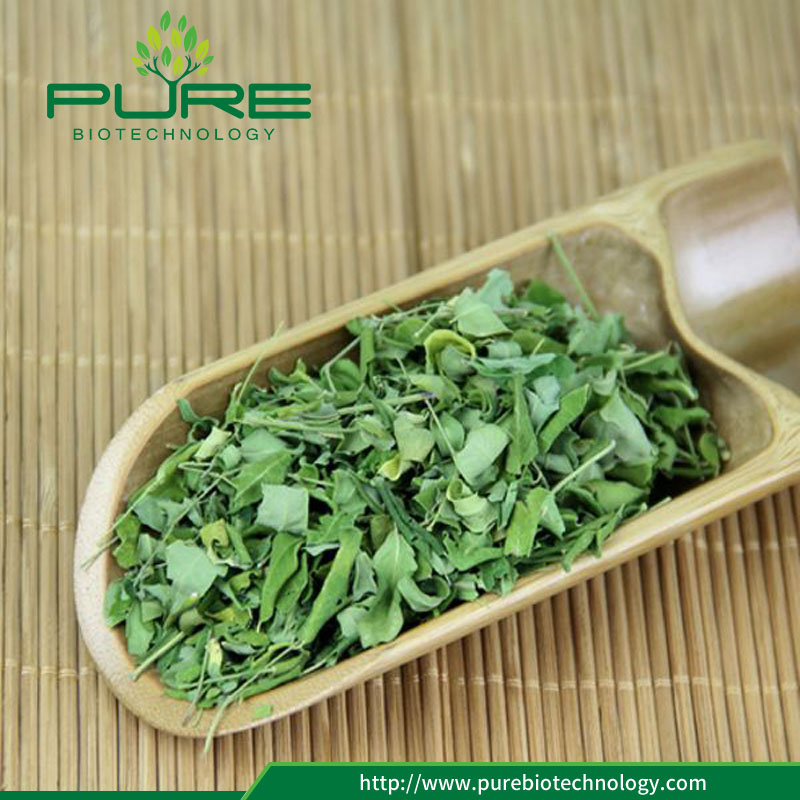 Moringa leaves for sale