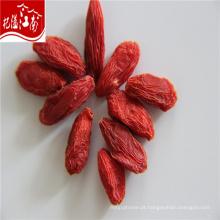 Ningxia zhongning secas bagas de goji 280
