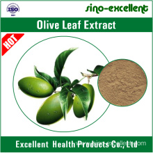 Factory made hot-sale for Green Tea Extract Olive Leaf Extract powder export to Indonesia Manufacturers