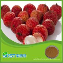 china manufacturer 2015 new products fruit powder litchi juice
